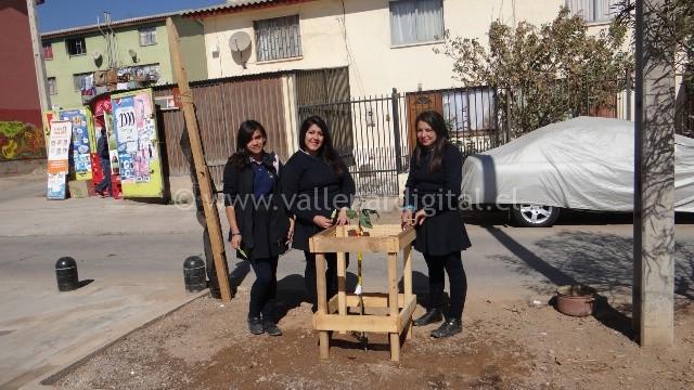 arborización (4)