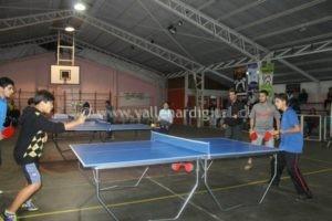 tenis mesa