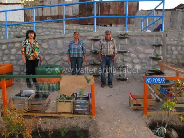 1er Huerto Comunitario en Vallenar (13)