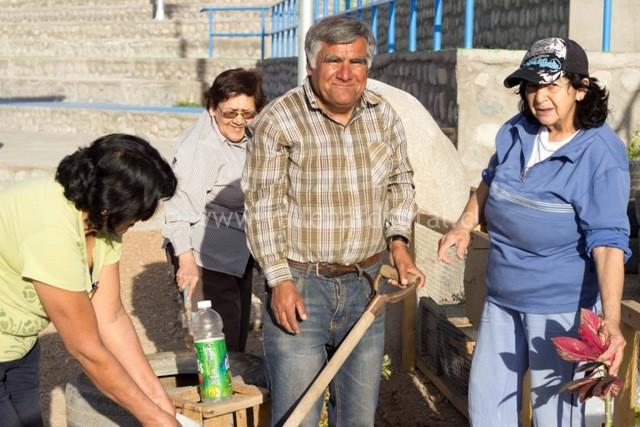 1er Huerto Comunitario en Vallenar (16)