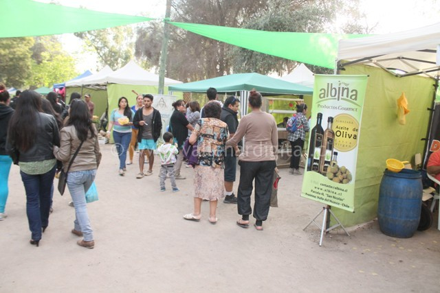 Clausura Expo Huasco 2014 (5)