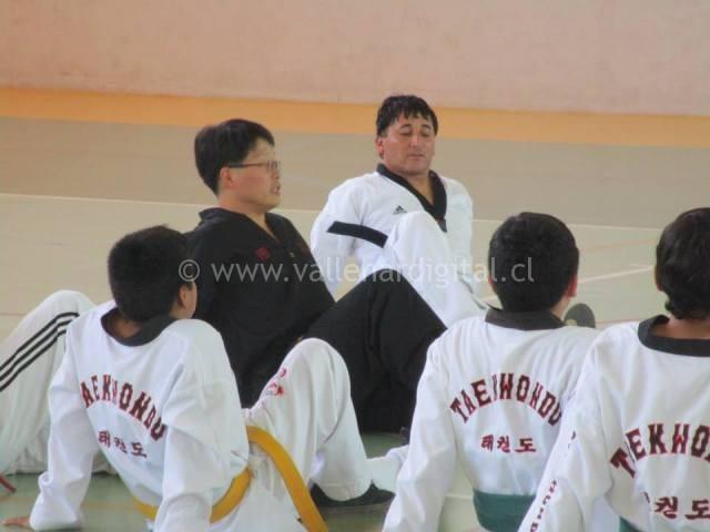 Clínica de Taekwondo (2)