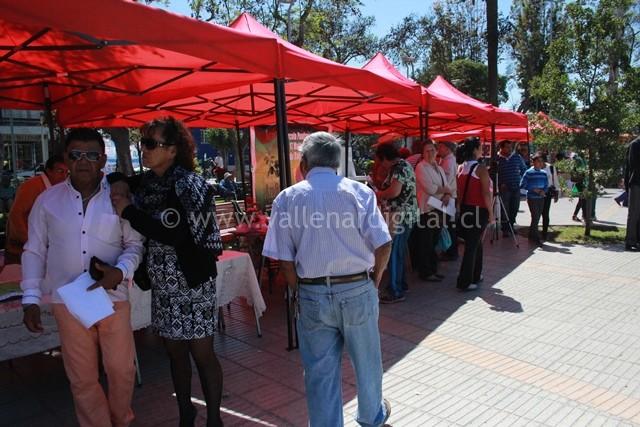 Fiesta de la Primavera 2015 (3)