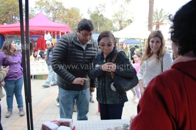 Encuentro Cultural entre Vallenar y Alto del Carmen (2)