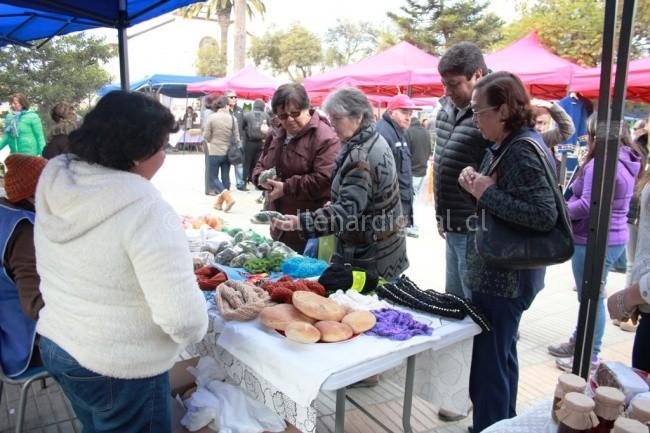 Encuentro Cultural entre Vallenar y Alto del Carmen (3)